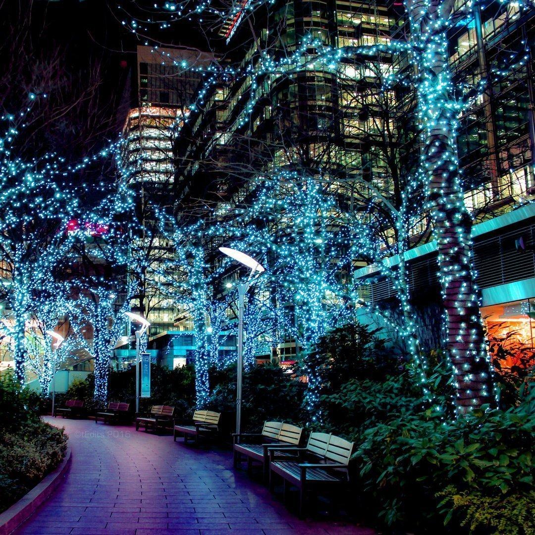 Canary Wharf Jubilee Park Neon Lights