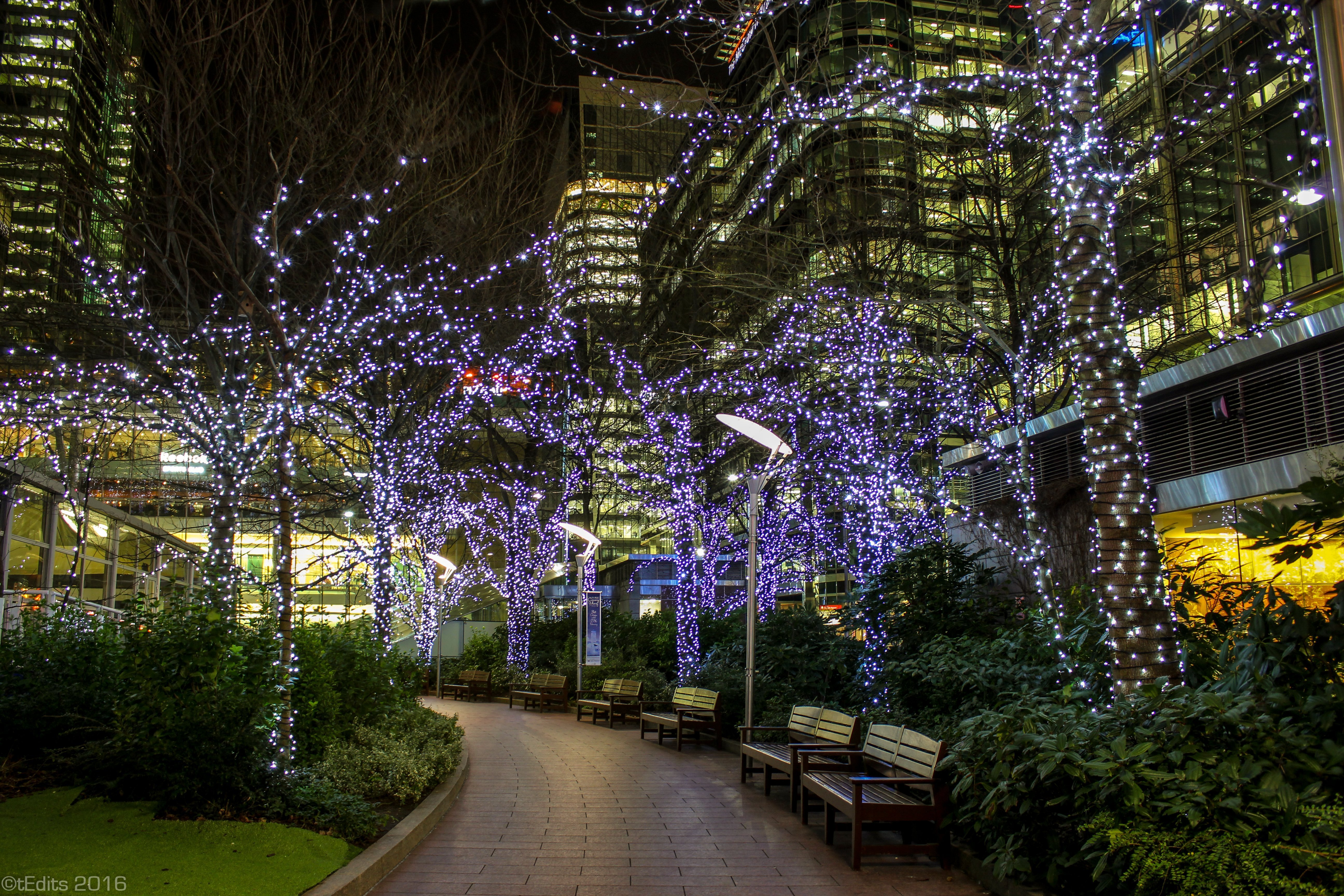 Canary Wharf Winter Lights 2016 - Jubilee Walkway
