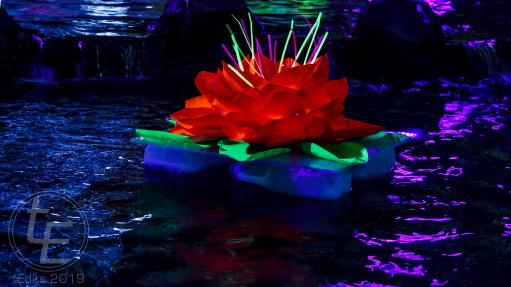 Canary Wharf Winter Lights 2019 - Floating Islands, Murude Mehmet, Rose