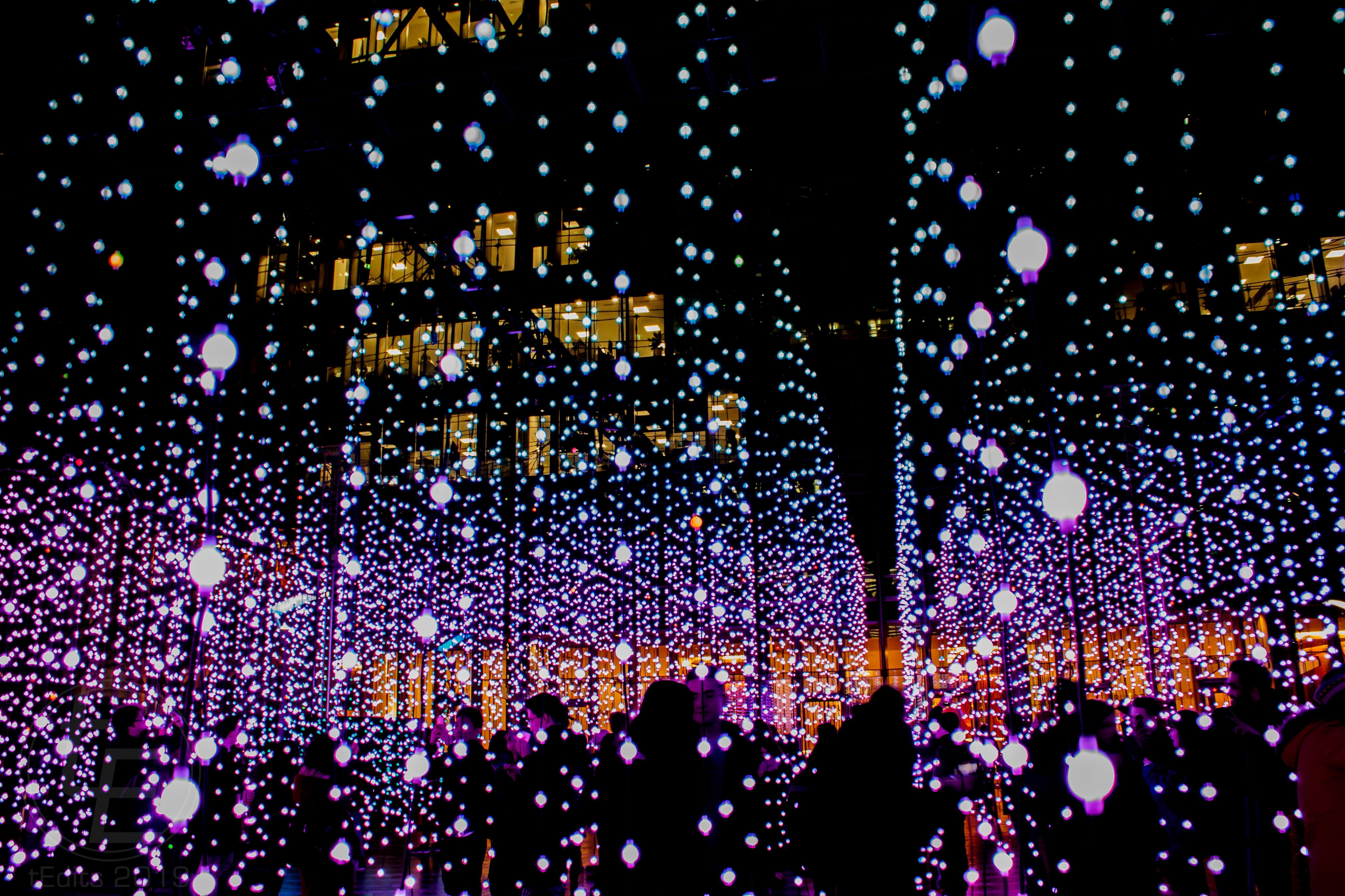 Canary Wharf Winter Lights 2019 - Submergence, Squidsoup