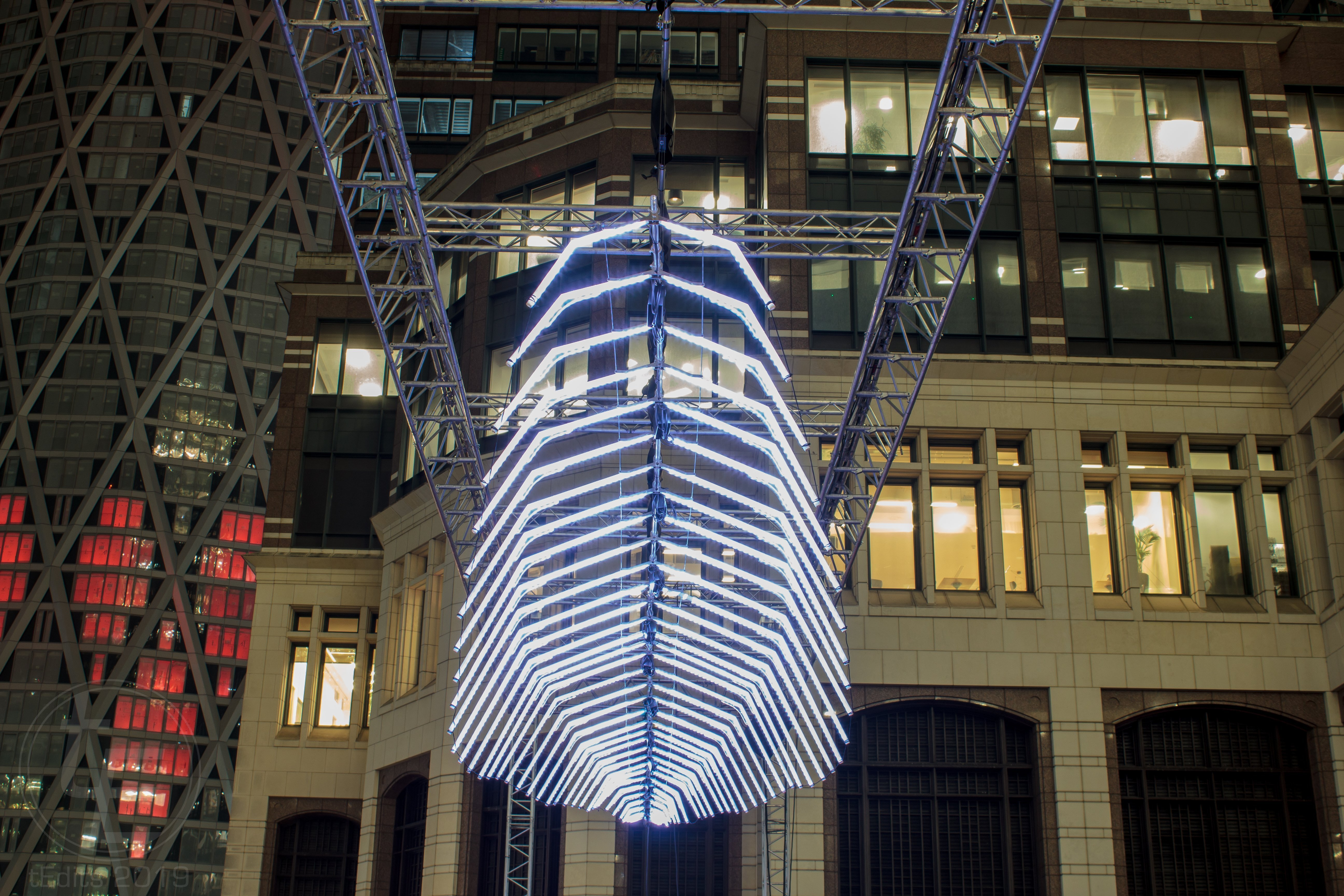 Canary Wharf Winter Lights 2019 - Whale Ghost, Pitaya