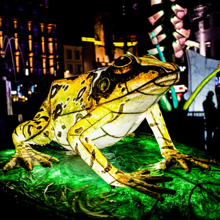 Lumiere London 2018 Lantern Company Frog