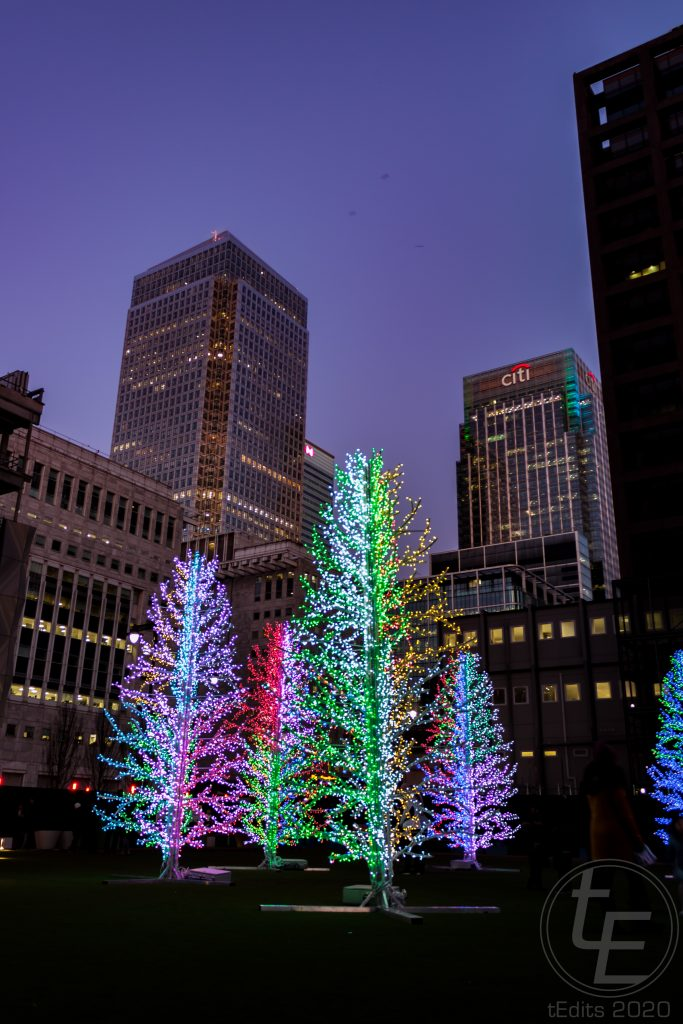 Canary Wharf Winter Lights 2020 - Sasha Trees by Adam Decolight